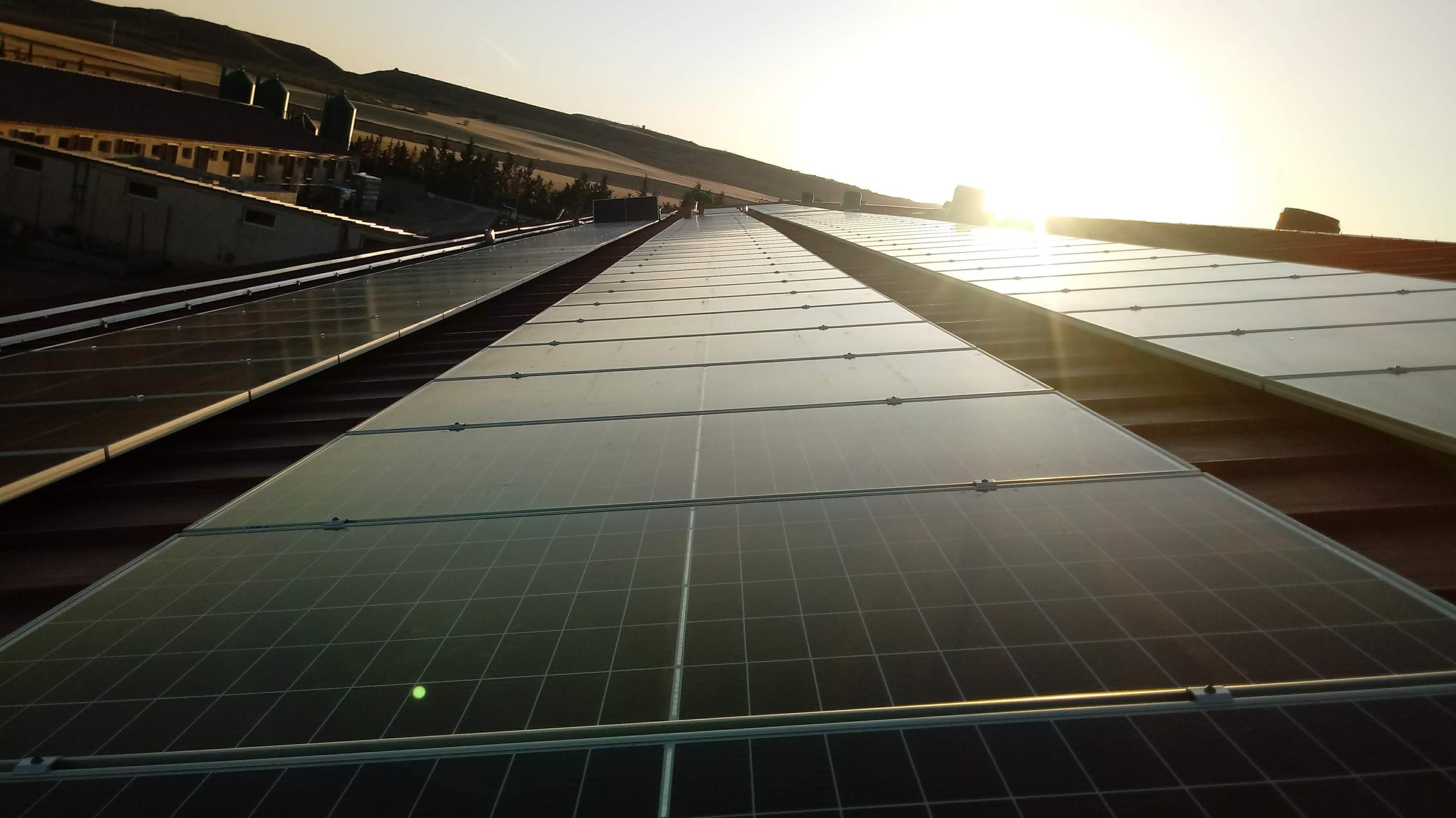 Granja Belchite_paneles PV cubierta